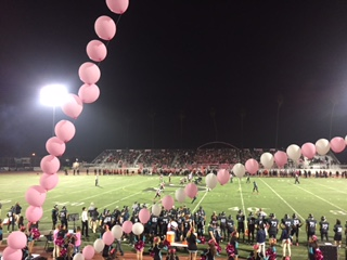 Sharks vs Huskies Pink Out Game