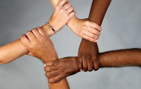 Diverse or Divisive: A Social Experiment