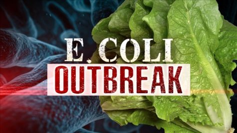 E. Coli Threat in Restaurants