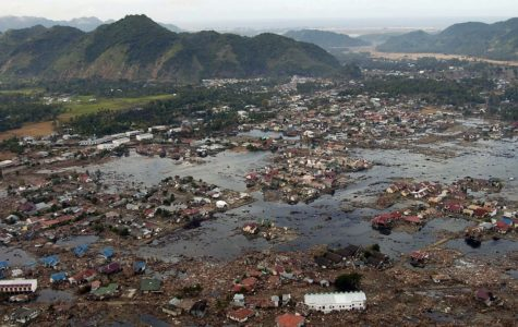 Indonesian Earthquake and Tsunami Catastrophe