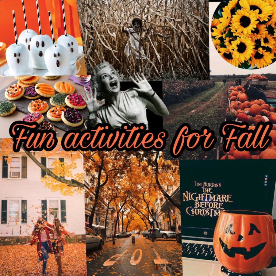 Activities+for+the+Fall+Season