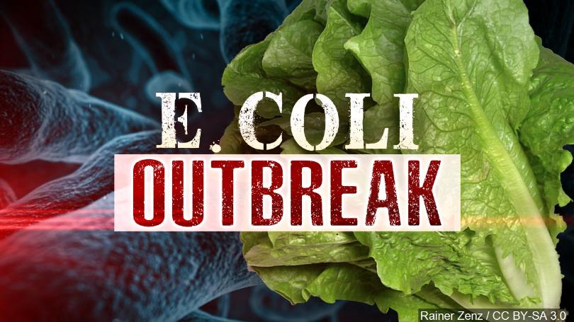 E.+Coli+Outbreak+in+Romaine+Lettuce