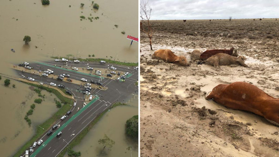 Queensland+Flood