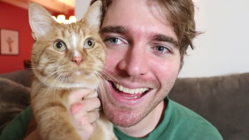 http://edailybuzz.com/2019/03/18/shane-dawson-does-nasty-things-to-cheeto-his-cat-listen-to-his-podcast/