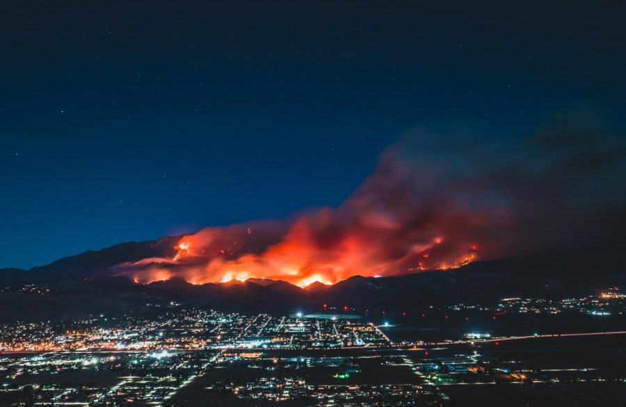 The Effect of California Wildfires On The Environment
