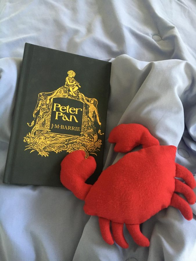 Book+Review%3A+Peter+Pan+by+J+M+Barrie